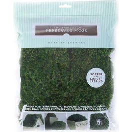 Preserved Mood Moss 112.5 Cubic Inches  - QG1438