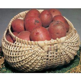 """Blue Ridge Basket Kits Potato Basket 7""""X12""""X12"""" - 12664"""