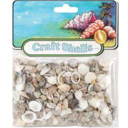 Craft Shells 150/Pkg Natural - 67111