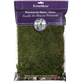 Perserved Sheet Moss 8Oz  - 21512
