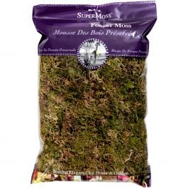 Forest Moss Dried 8Oz  - 21577