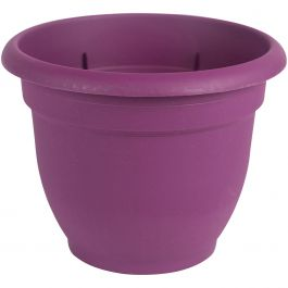 "Ariana Pot W/Watering Disk 10"" Passion Fruit - AP1029"