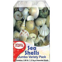 Mixed Sea Shells 2.5Lb Container Assorted - DECS40OZ
