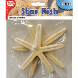 "Decorative Star Fish 6"" 2/Pkg  - DECSF6"