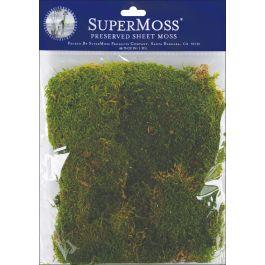 Preserved Sheet Moss 2Oz Green - FS21550