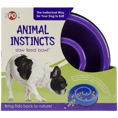 Animal Instincts Slow Feed Bowl 10