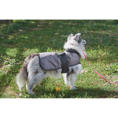 Dog Artic Coat Grey Medium - 752565