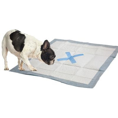 X Marks The Spot Puppy Pads 22