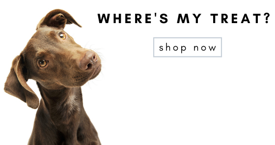 Shop for all your pets needs